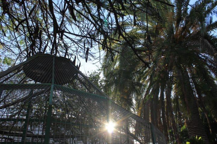 Parque Lulú en Telde