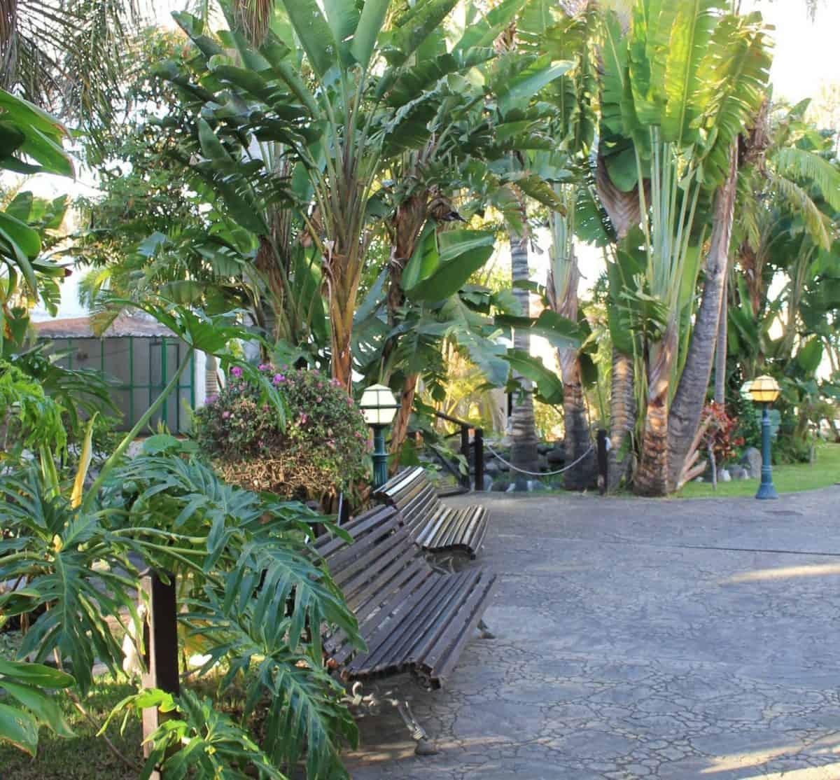 Parque Lulú en el municipio de Telde