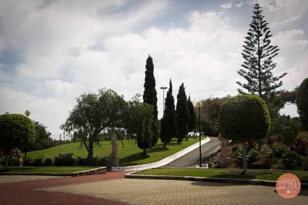 zona verde en parques en Telde