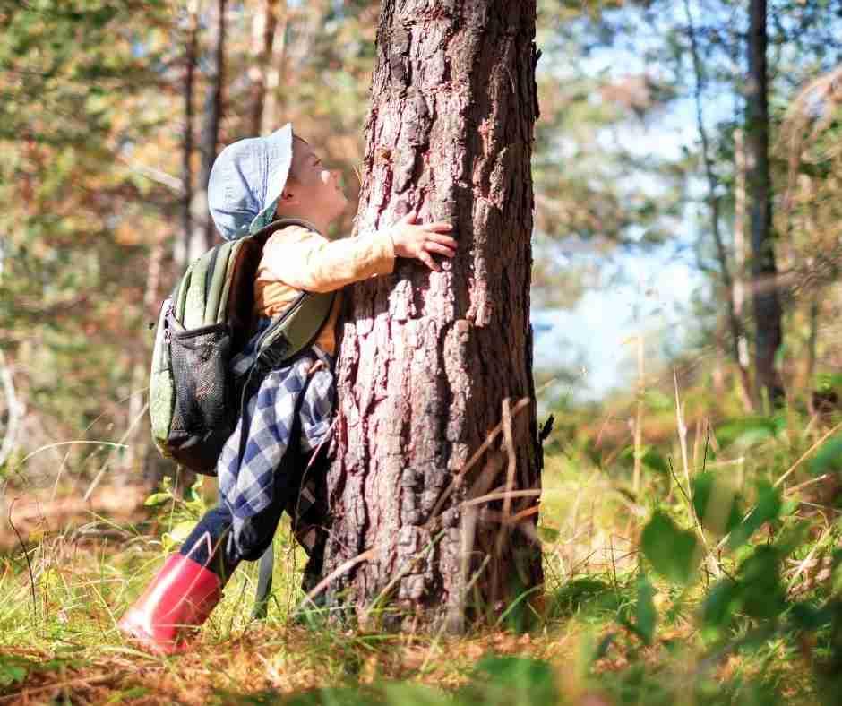 la relación de la naturaleza y los niños