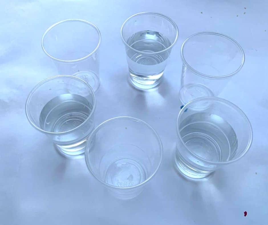 vasos con agua para experimento